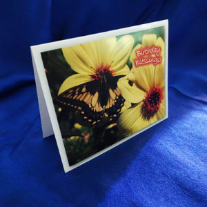 Birthday Blessings Notecards
