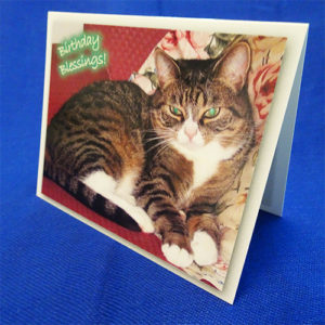 Friendly Feline Notecard